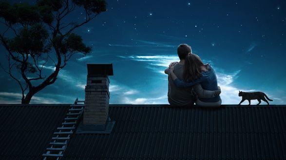 Обои Влюбленные сидят на крыше дома и смотрят на ночное звездное небо, рядом с ними кот