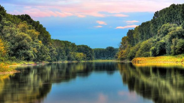 Обои Красивый лесной пейзаж с безмятежной водой