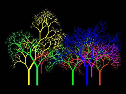 Обои Разноцветные фракталные деревья на черном фоне