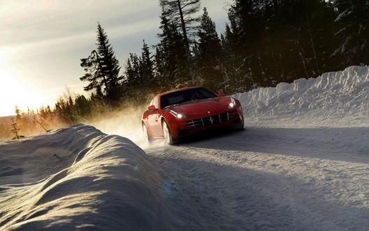 Обои Автомобиль Ferrari FF / Ferrari Four мчится утром по снежной дороге вдоль хвойного леса