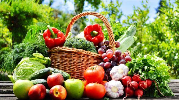 Обои Фрукты, ягоды, овощи, зелень в корзинке и рядом с ней на фоне природы
