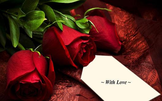 Обои Три красных розы и надпись (With Love / С любовью)