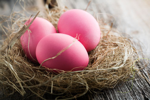 Обои Раскрашенные пасхальные яйца в гнезде из травы