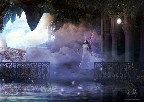 Обои Девушка с крылышками за спиной, стоит в окутывающем ее тумане, by StarsColdNight