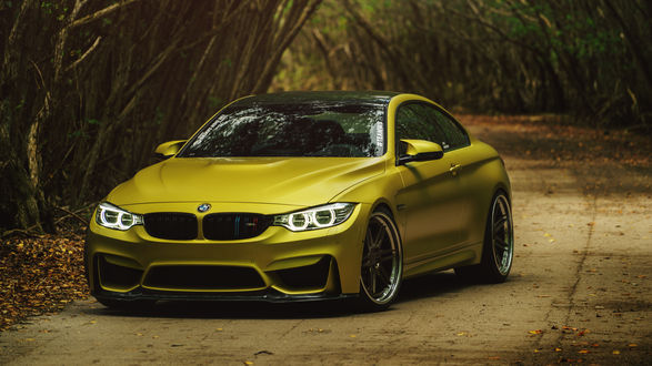 Обои Автомобиль BMW M4 Coupe Austin Yellow стоит на дороге в тоннеле из деревьев