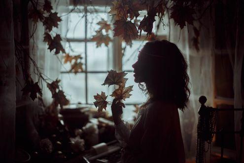 Обои Девушка с осенними листьями сидит в комнате, by Shi-Nya-Nya