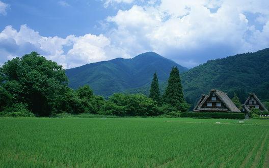Обои Несколько домов на фоне покрытых лесами гор