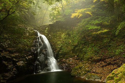 Обои Маленький водопад в осеннем лесу