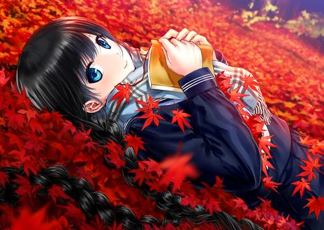 Обои Девушка с теплой одежде лежит с книгой в руках на осенних листьях, автор Кazuharu Кina