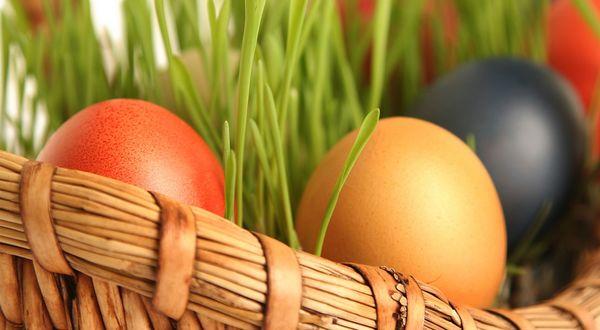 Обои Раскрашенные пасхальные яйца в корзинке среди зелени