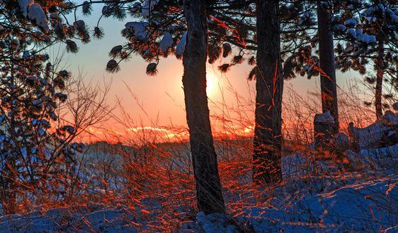 Обои Зимний закат от фотографа Mevludin Sejmenovic