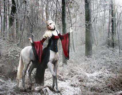 Обои Девушка - единорог в черно - белом лесу