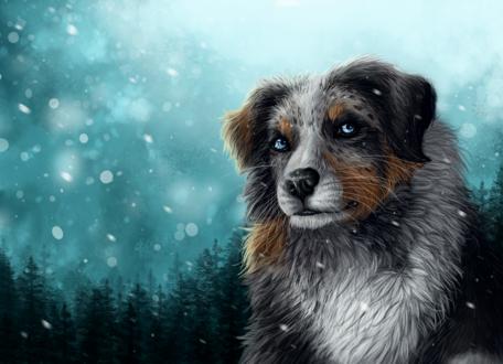 Обои Пес под снегопадом, by Gaia-Arts