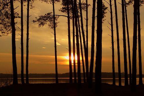 Обои Золотой закат над озером Sulejowski Reservoir в Poland / Польше, фотограф Joanna RB