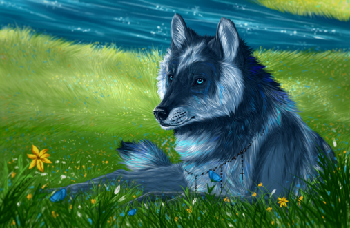 Обои Волк лежит на поляне с цветами, by Gaia-Arts