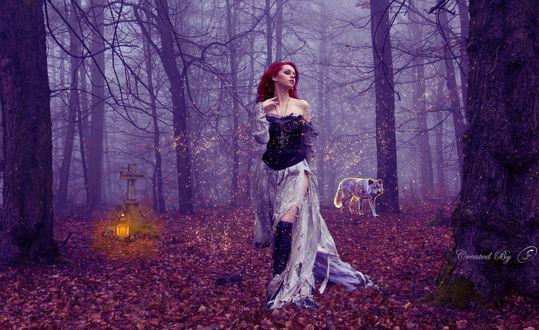 Обои Девушка, идущая по лесу, на заднем плане силуэт волка