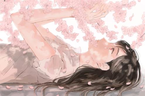Обои Плачущая девушка под ветками цветущей сакуры