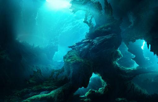 Обои Подводный таинственный мир, by ElenaDudina