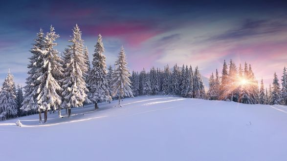 Обои Красивый восход солнца на фоне зимнего леса и облаков