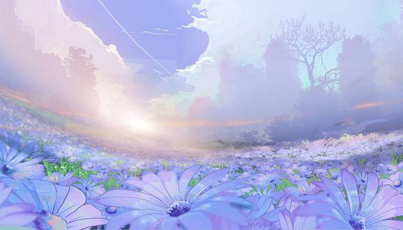 Обои Поле голубых цветов над облачным небом, by Clo sz
