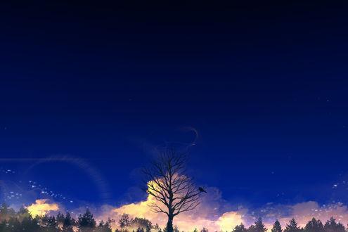 Обои Ворон на ветке большого дерева, автор Y_Y