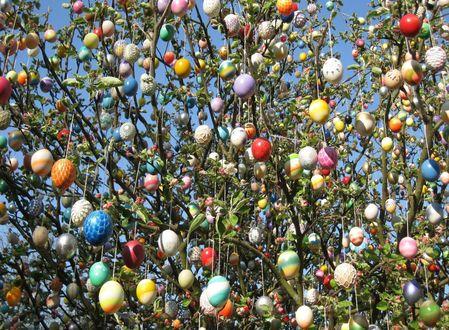 Обои Дерево, увешанное пасхальными яйцами