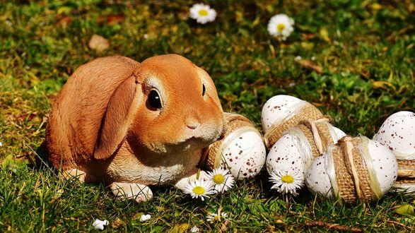 Обои Пасхальный кролик рядом с пасхальными яйцами на траве
