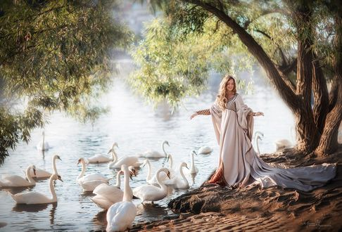 Обои Девушка стоит у водоема с лебедями, фотограф Ирина Недялкова