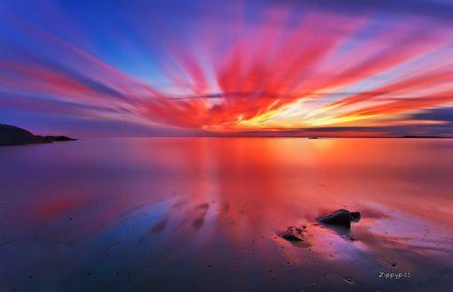 Обои Краснорозовый закат над морем, фотограф Zippy Dave