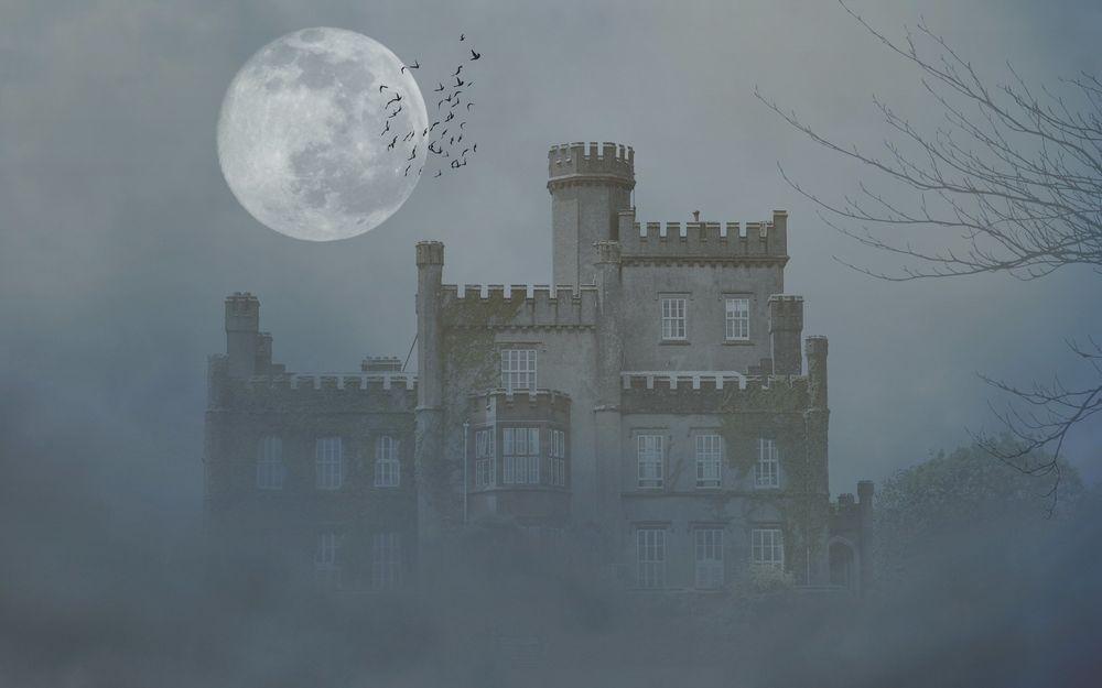 Обои для рабочего стола Замок окутан пеленой тумана, в небе над замком полная луна и стая пролетающих птиц