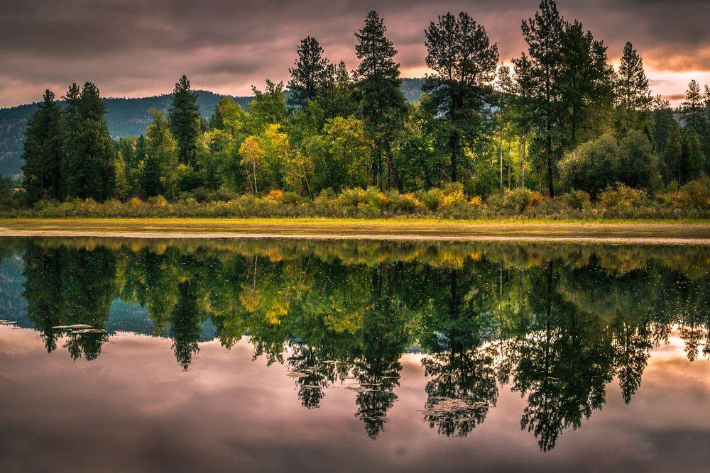 Обои для рабочего стола Деревья и их отражение в воде, восход, фотограф Raul Weisser