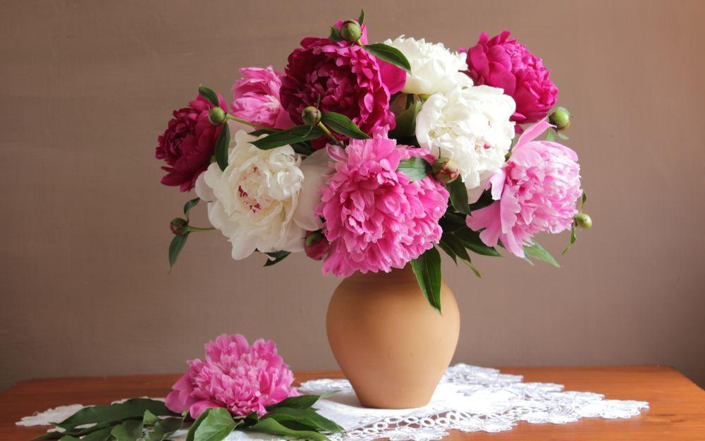 Обои для рабочего стола Ваза с букетом из розовых, белых и бордовых пионов стоит на столе