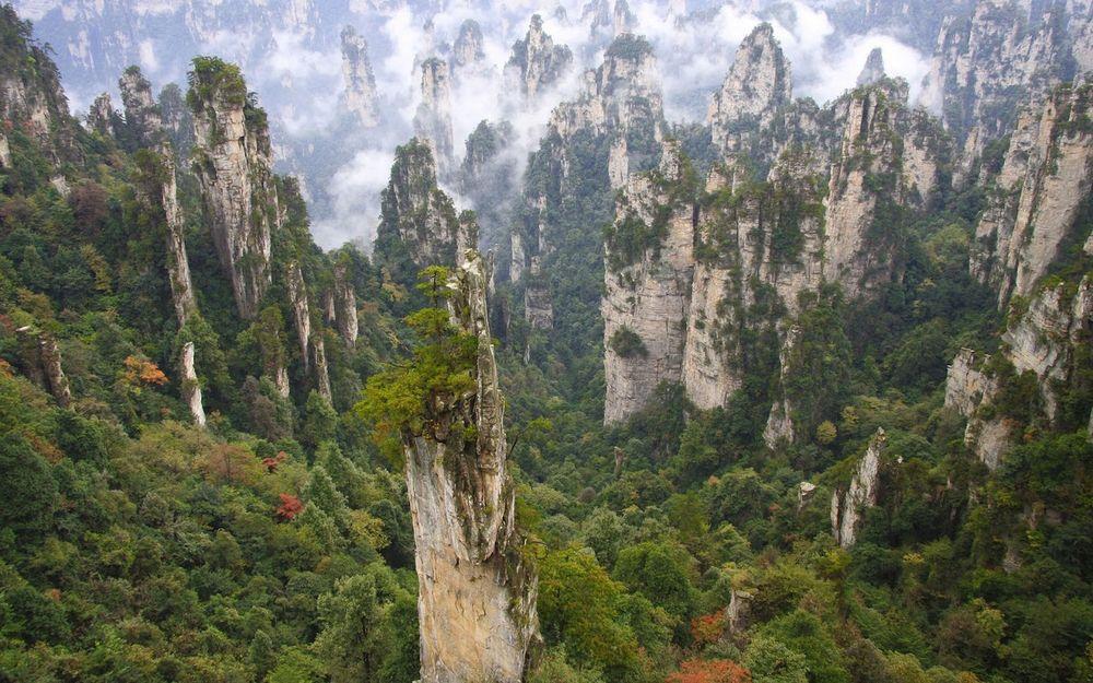 Обои для рабочего стола Дорога ведет вглубь гор, к вершинам, покрытым хвойными деревьями, Zhangjiajie National Forest Park, China