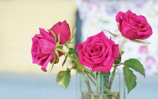 Обои Ваза с букетом розовых роз на размытом фоне