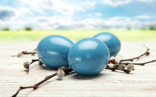 Обои Крашенные синие пасхальные яйца и веточка вербы