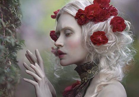 Обои Девушка с цветами в волосах держит руки перед собой, фотограф Agnieszka Lorek