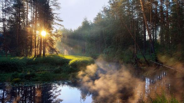 Обои Река изгибается в лесу, над ней клубится туман, подсвеченный встающим солнцем