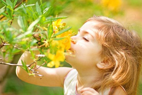 Обои Девочка вдыхает аромат цветущих цветов на ветке