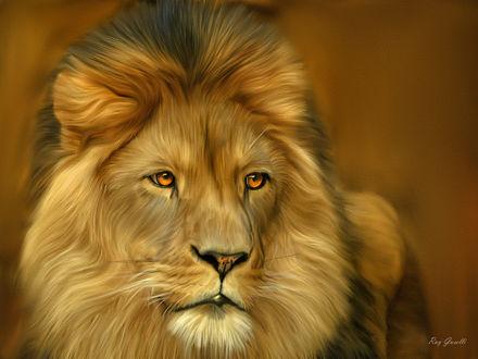 Обои Красивый нарисованный лев с желтыми глазами, by Ray Guselli