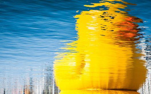 Обои Отражение резиновой утки в воде