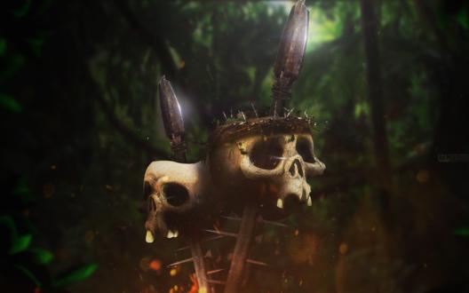Обои Черепа, надетые на пики и подсвеченные снизу, стоят в глубине темных размытых джунглей