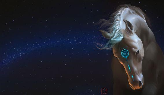 Обои Фантастическая белая лошадь на фоне звездного неба, художник Александра Хитрова