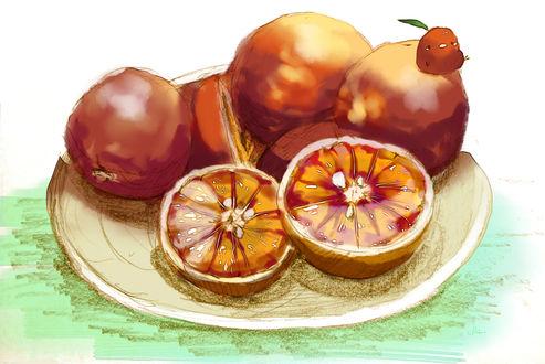 Обои Тарелка с апельсинами и птичка, by チャイ