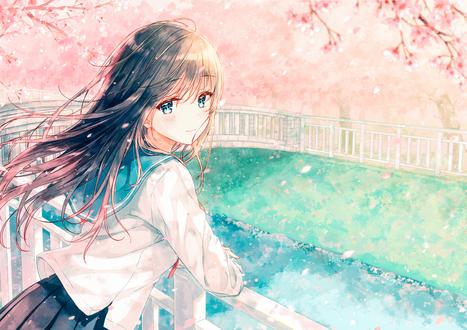 Обои Девочка в школьной форме стоит на мосту, облокотившись на перила, под цветущей сакурой