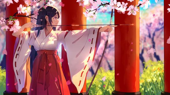 Обои Девушка в кимоно целится из лука, стоя под цветущей сакурой
