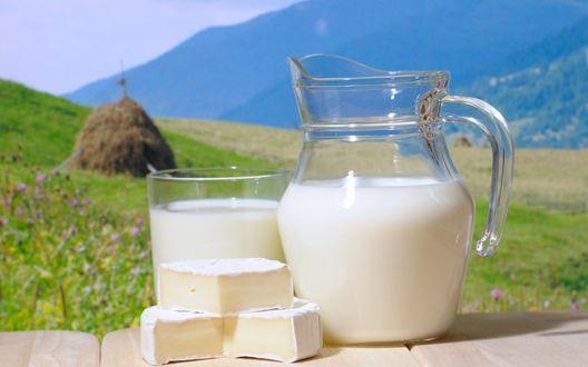 Обои Кувшин с молоком и масло на природе