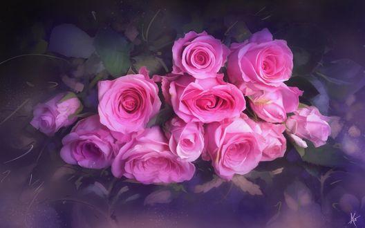 Обои Красивый букет розовых роз