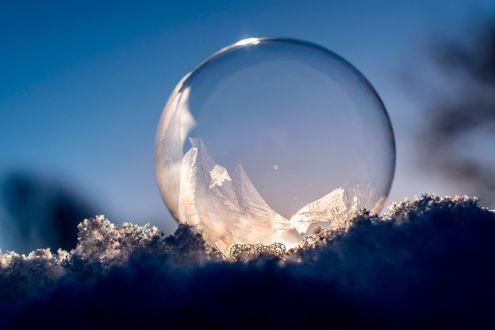 Обои Замороженный мыльный пузырь на снегу