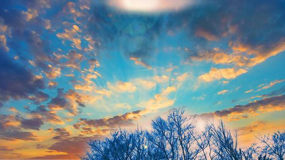 Обои Облака, окрашенный закатом, над макушками деревьев, by itoaya♪
