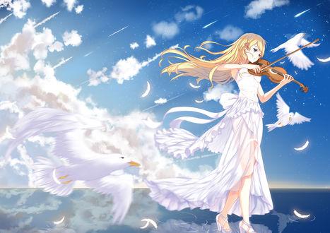 Обои Каори Миязоно / Kaori Miyazono из аниме Твоя апрельская ложь / Shigatsu wa Kimi no Uso, играет на скрипке в окружении чаек